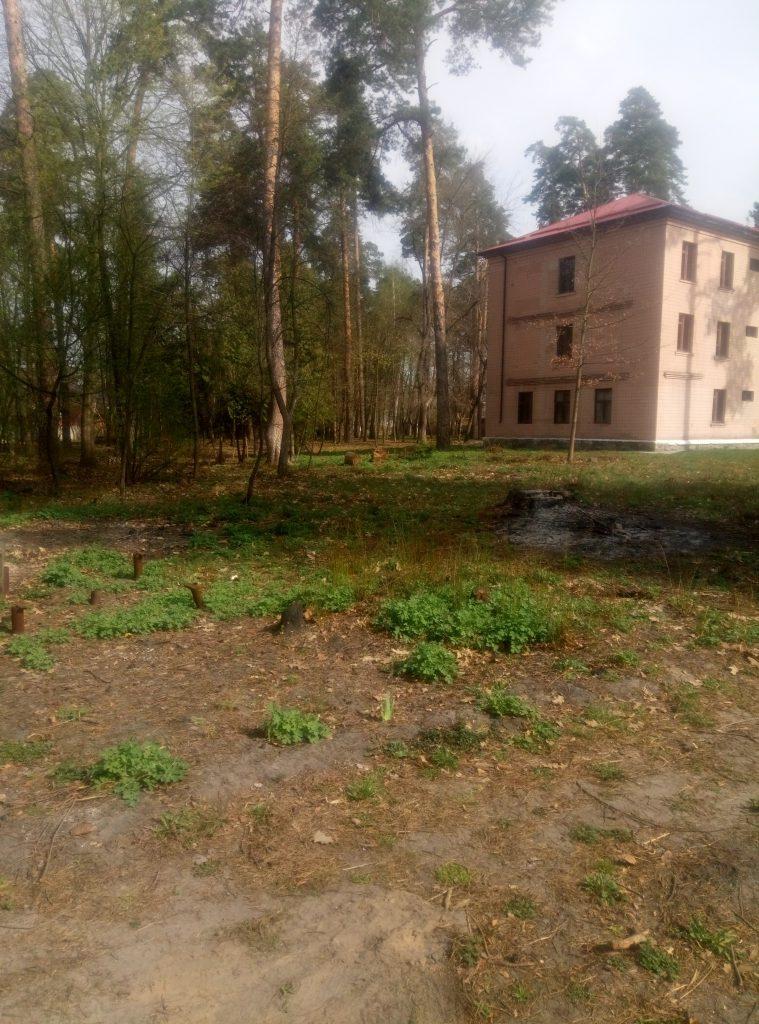 База відпочинку у Боярці
