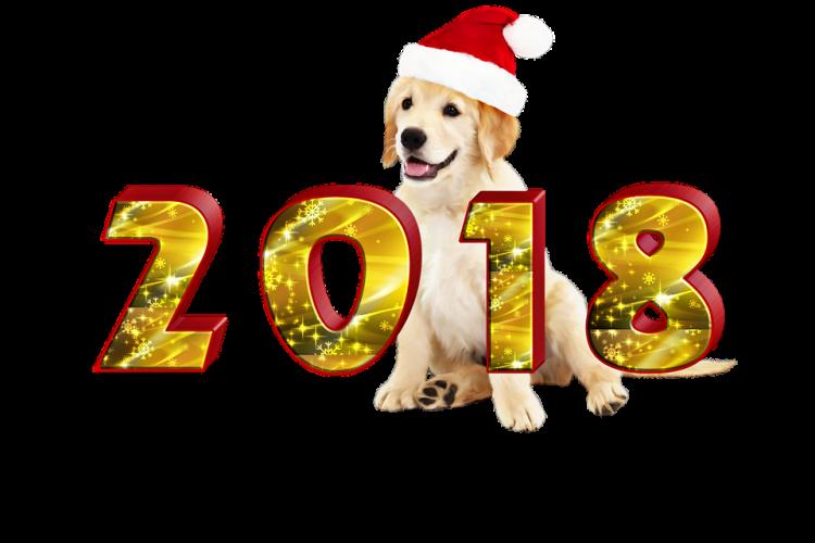 2018 рік - рік жовтого земляного Собаки